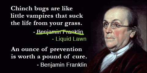 ben franklin lawn care quote