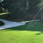 Bermuda lawn in Macon / Warner Robins Georgia