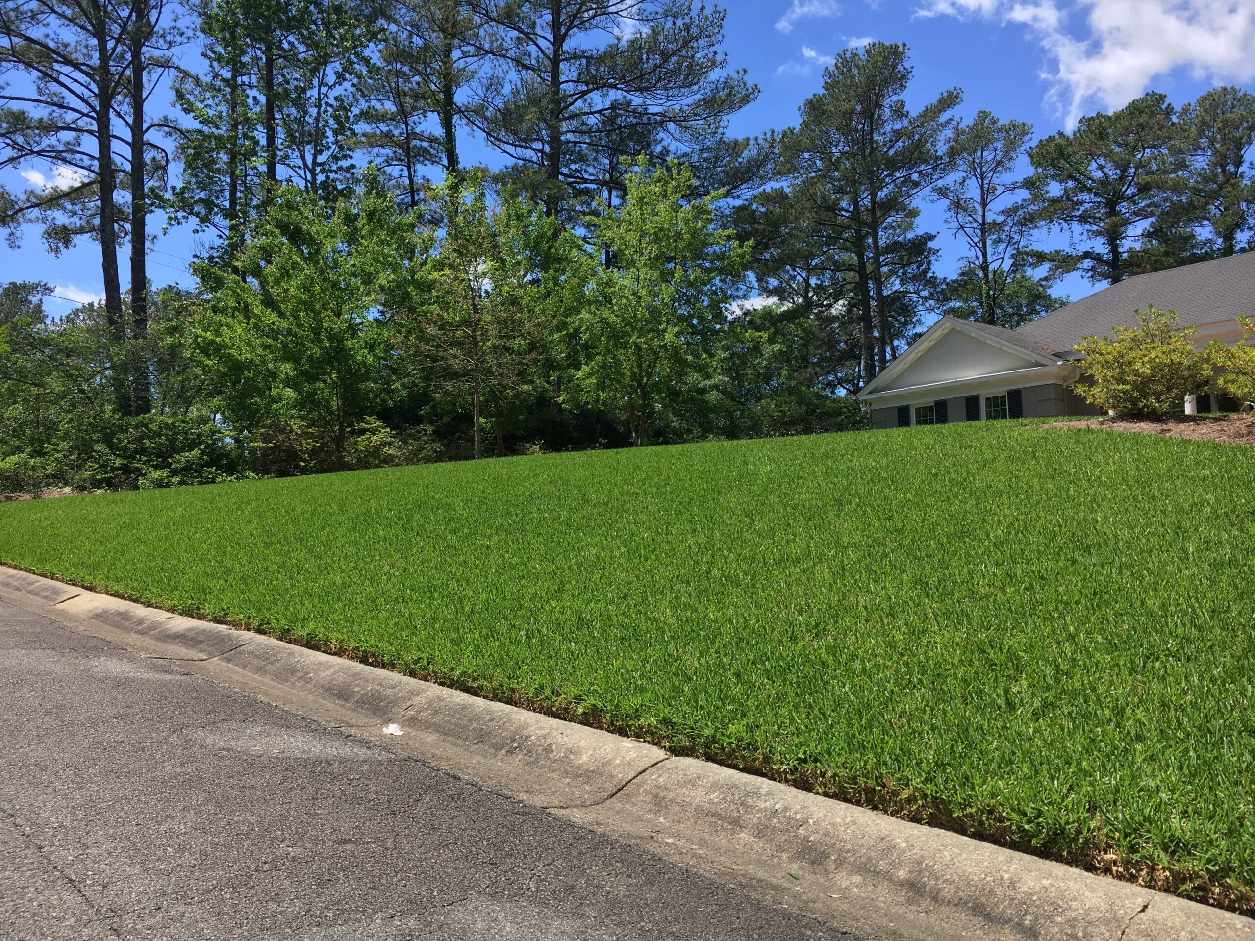 This is lawn in the Macon and Warner Robins area that is maintained by our lawn care service.