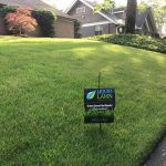 Photo - street view of a lawn that just had a weed treatment in Warner Robins. This lawn is emerald zoysia and is dark green and weed free thanks to our weed control program in Warner Robins.