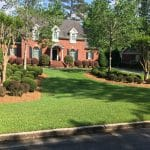 Centipede Lawn Care Macon / Warner Robins
