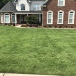 photo - street view of an emerald zoyisa lawn that is on our lawn treatment program for weed control in warner robins. It is beautiful dark green and completely weed free.