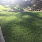 Bermuda Lawn Care Macon / Warner Robins