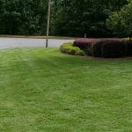 This zoysia lawn is in bonaire, ga and is dark green and weed free. It is maintained by one of our lawn care teams.