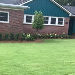 Bermuda Lawn in Macon / Warner Robins