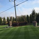 Our office photo in macon, ga which is north of bonaire. This zoysia lawn is dark green and lush and thick