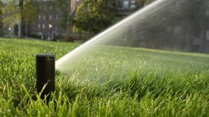 photo-of-rotor-sprinkler-watering-lawn