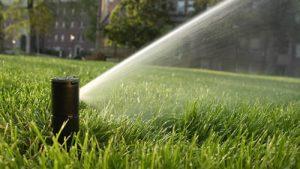 photo-of-rotor-sprinkler-watering-lawn