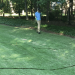 Photo of street view of an emerald zoysia lawn where a technician is applying weed control in Warner Robins. The lawn is dark green and weed free.