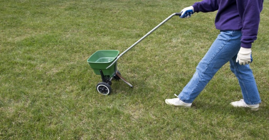 spring lawn care tips warner robins liquid lawn